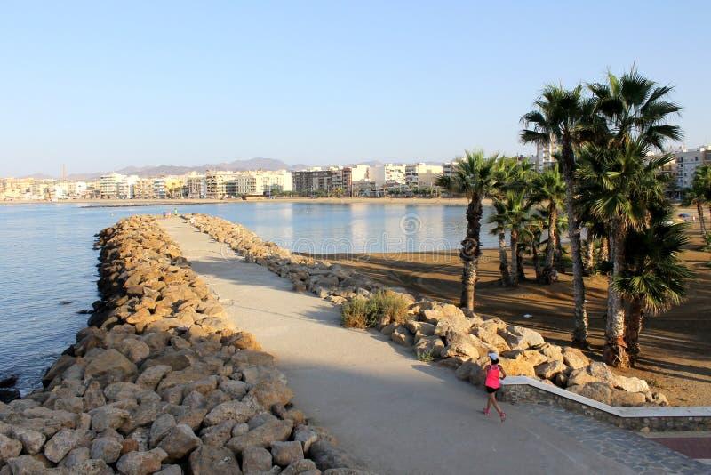 晃动在à  guilas渔镇的西部海滩的防堤和棕榈树  免版税图库摄影