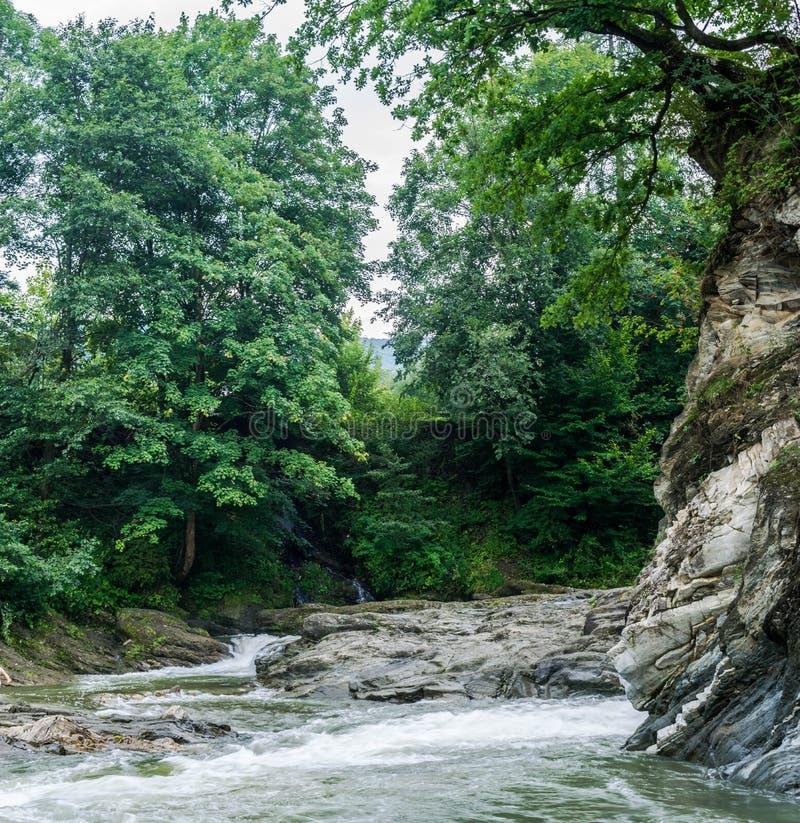 晃动在山河的河岸 免版税库存照片