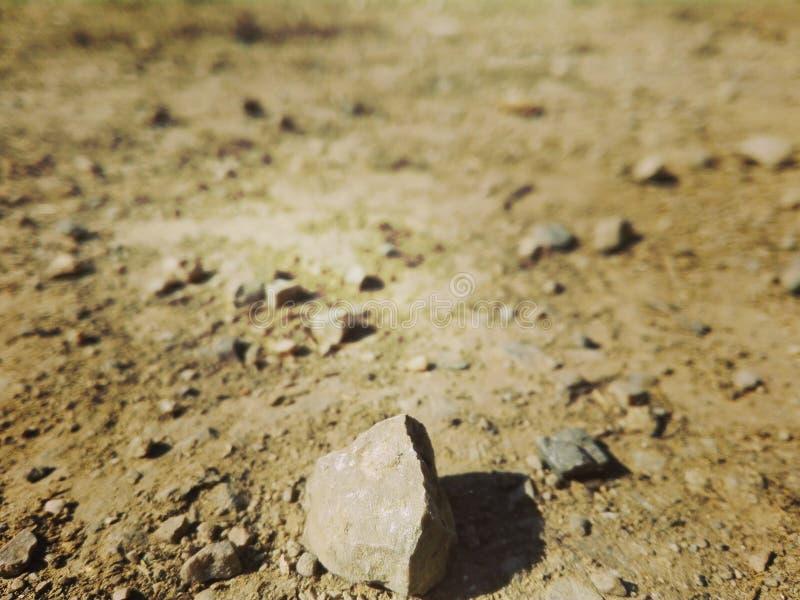 晃动在沙漠热高潮,看起来火星 图库摄影