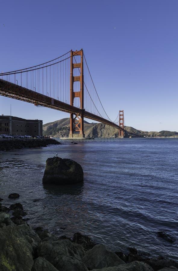 晃动在海滩在金门大桥附近在旧金山 图库摄影