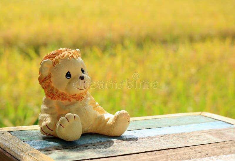 晒日光浴在与成熟粮食作物的稻田旁边,在长木凳的一个狮子坐的玩具 库存照片