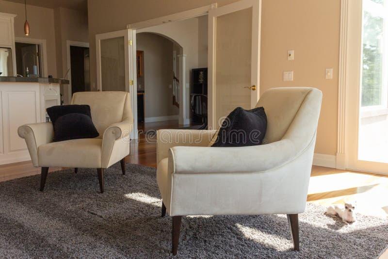 晒日光浴在地毯的梦想家和狗的客厅有两坐的炭灰的 库存照片
