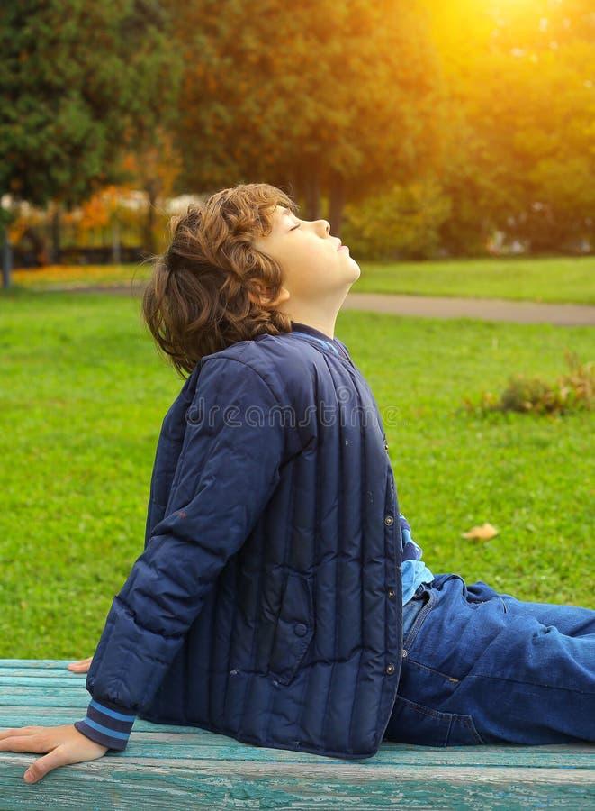 晒日光浴在秋天公园的青春期前的男孩 库存图片