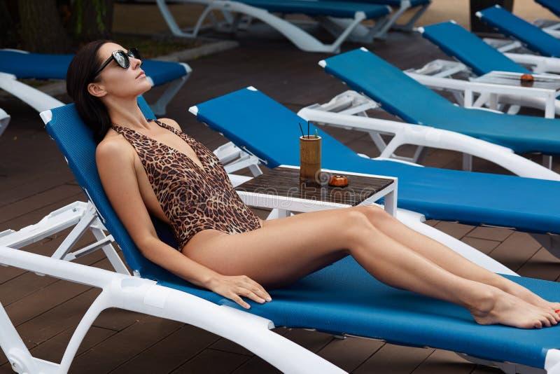 晒黑在蓝色海滩睡椅的夫人室外射击,放置在她在与豹子印刷品的时髦游泳的穿戴,黑暗的eyewear, 免版税图库摄影
