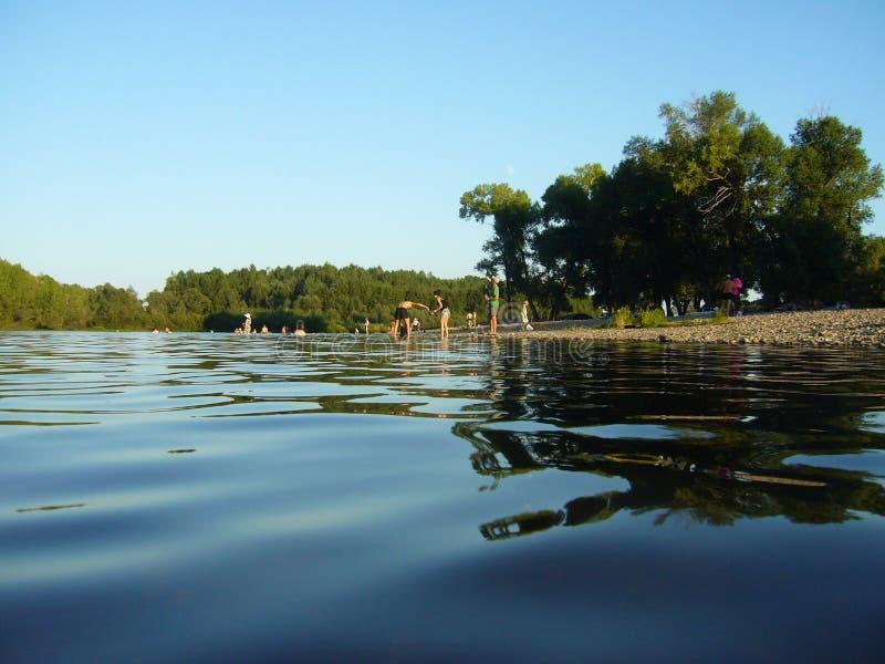 晚上与水、天空和树的夏天风景 免版税库存图片