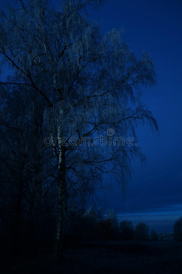 晚上农村横向 库存图片