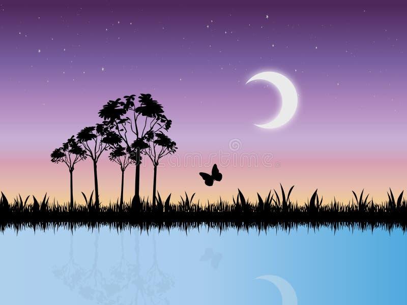 晚上场面满天星斗的沼泽向量 向量例证