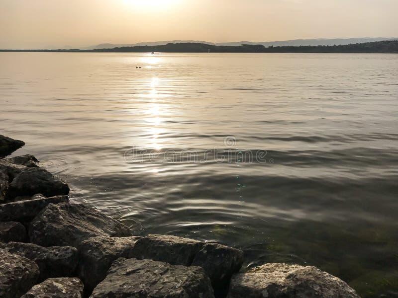 晚上太阳和光在湖有反射和平安的波纹的在湖穆尔滕在瑞士 免版税库存图片