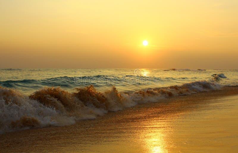 晚上海滩Koggala,斯里兰卡 图库摄影