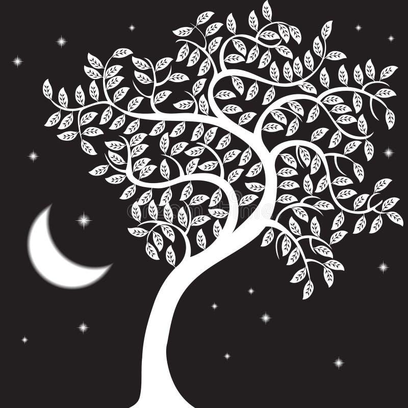 晚上结构树 皇族释放例证
