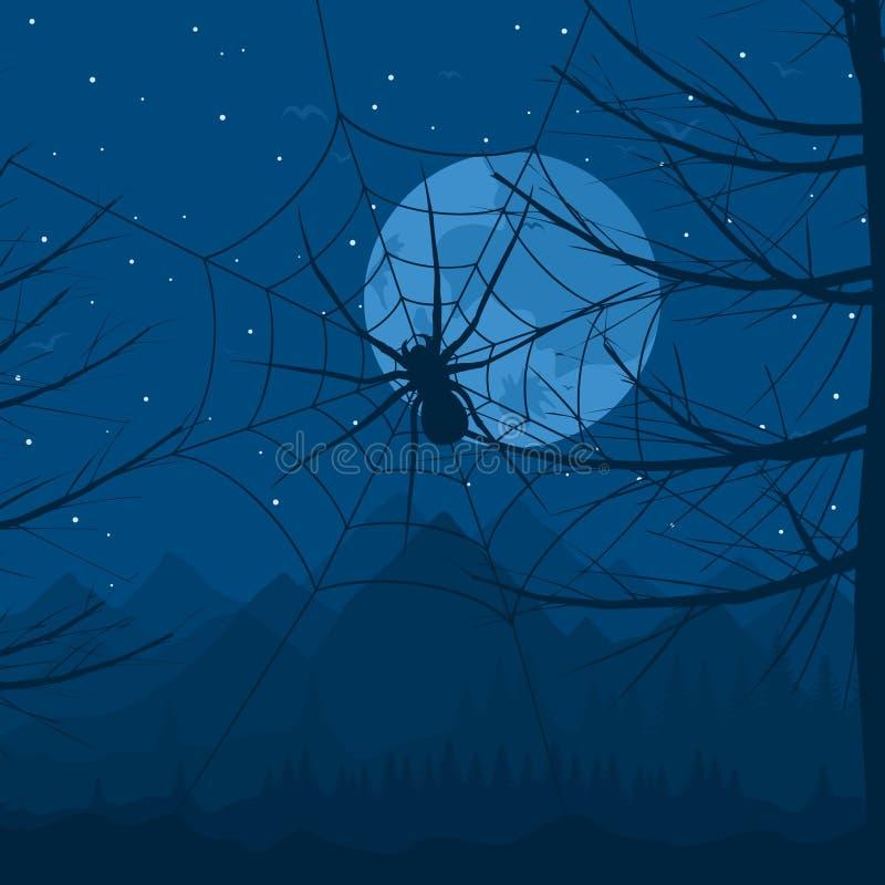 晚上蜘蛛 库存例证
