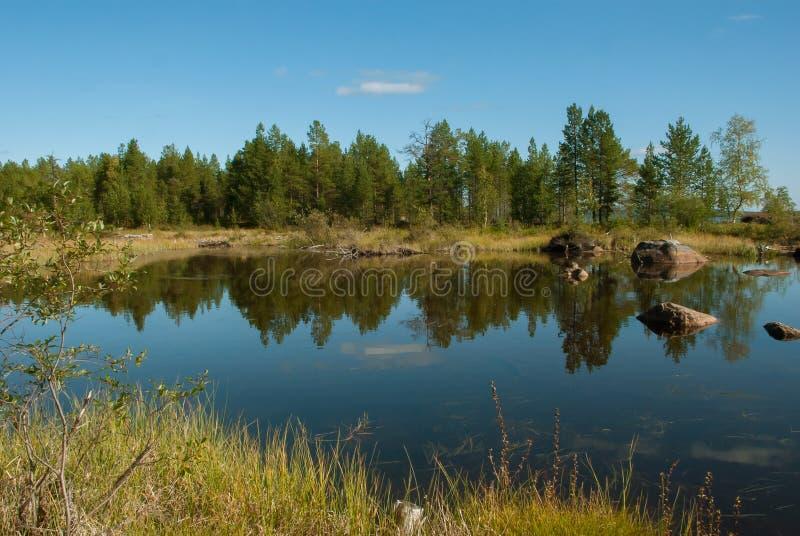 晚夏在芬兰拉普兰 库存图片