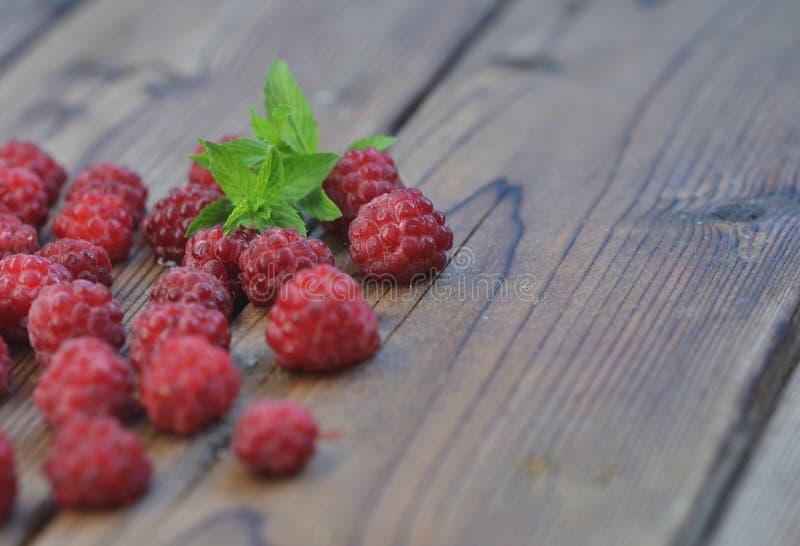 晚莓莓果用在木背景的霜盖在他们中薄菏小树枝  免版税图库摄影