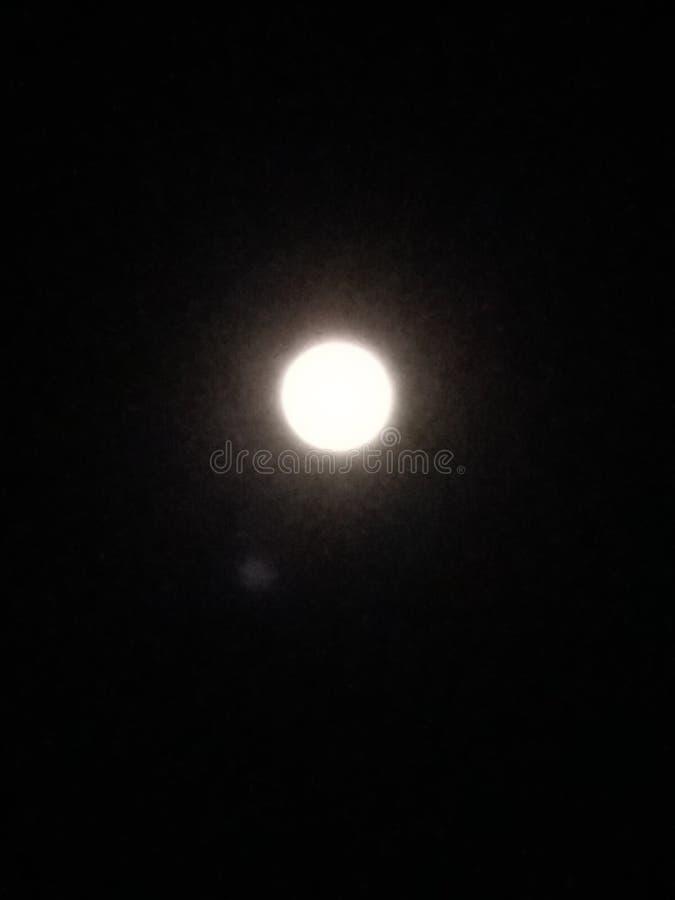 晚饭月亮 库存照片