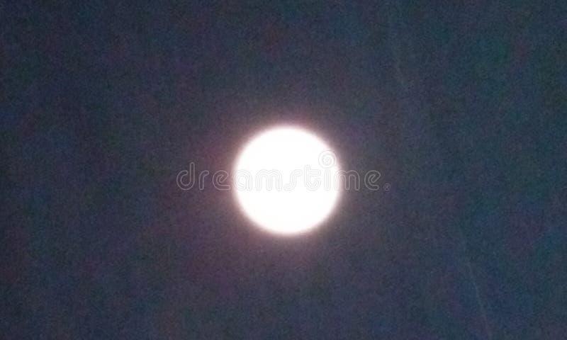 晚饭月亮 图库摄影