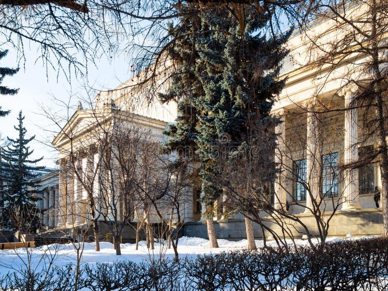 普希金状态波士顿美术馆大厦  免版税库存照片