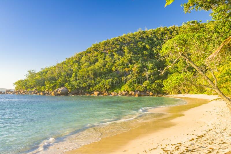 普拉兰岛海岛海岸线,塞舌尔群岛 免版税库存图片
