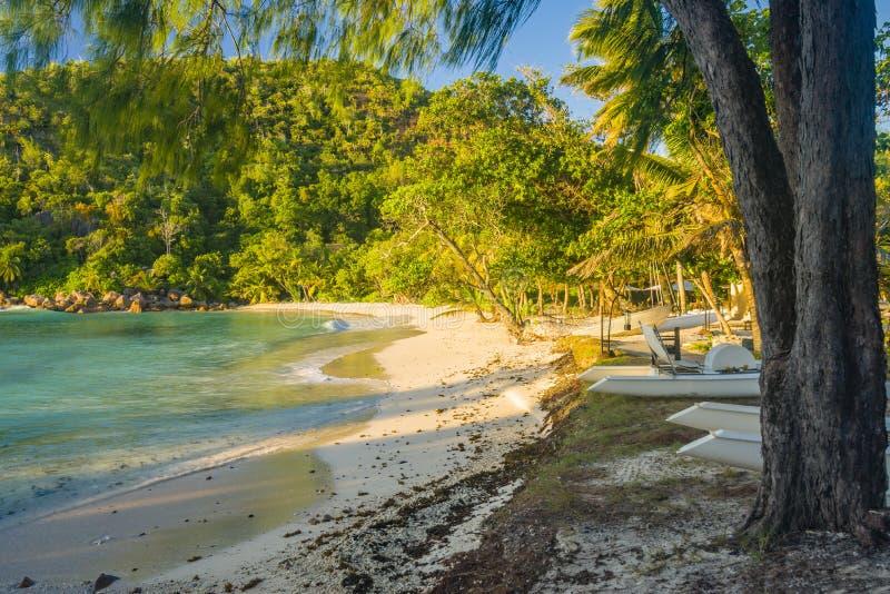 普拉兰岛海岛海岸线,塞舌尔群岛 图库摄影