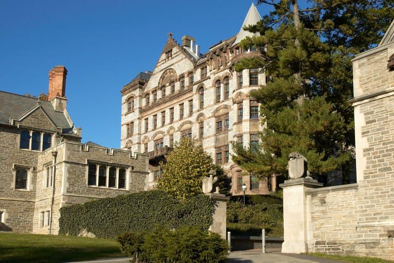普林斯顿大学 免版税库存图片