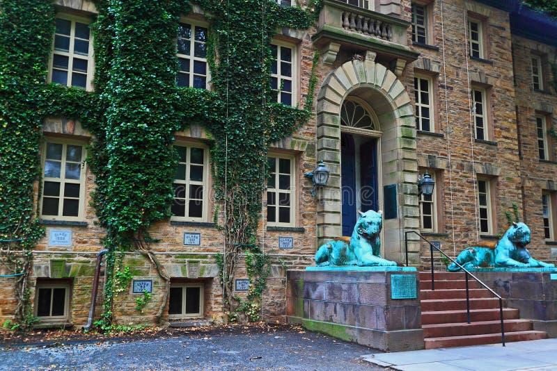 普林斯顿大学 库存图片