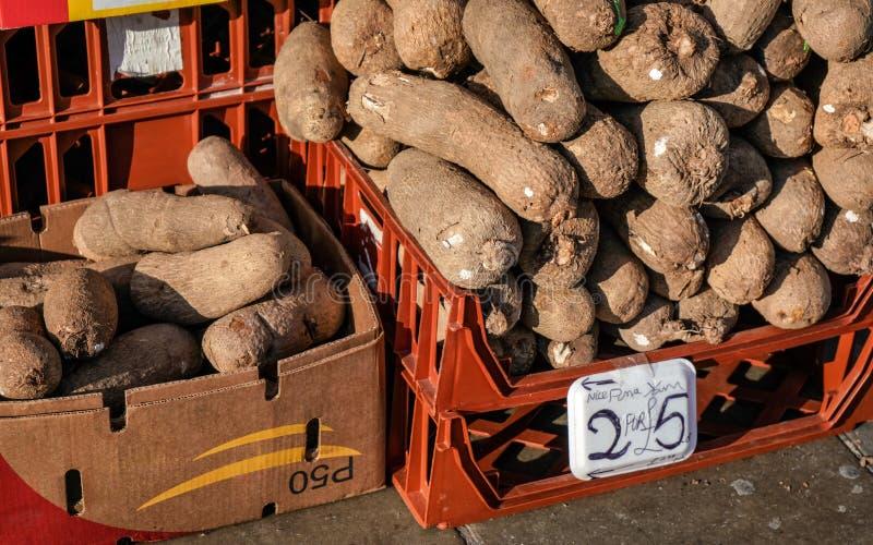 普纳岛在食物市场上显示的薯类薯蓣属在刘易舍姆,伦敦 免版税库存照片