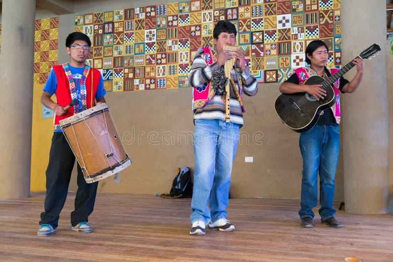 普诺,秘鲁-大约2015年6月:音乐家在传统秘鲁衣裳执行在普诺,秘鲁附近 库存照片