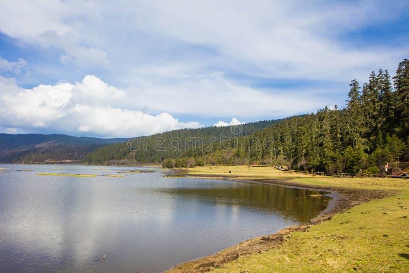 普达措国家公园,第一个国家公园用中文 免版税库存照片