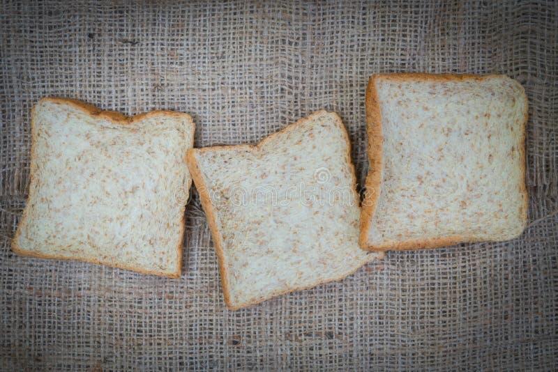 普通小麦三个片断 图库摄影