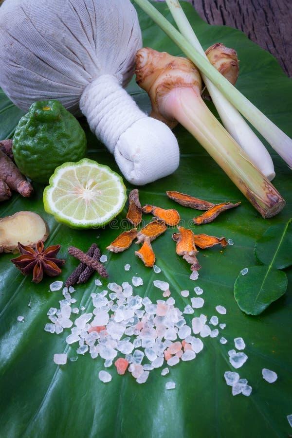 普遍泰国按摩和温泉的治疗的草本压缩球 免版税库存照片