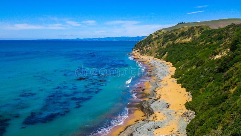 晴朗沿海在新西兰 免版税库存照片