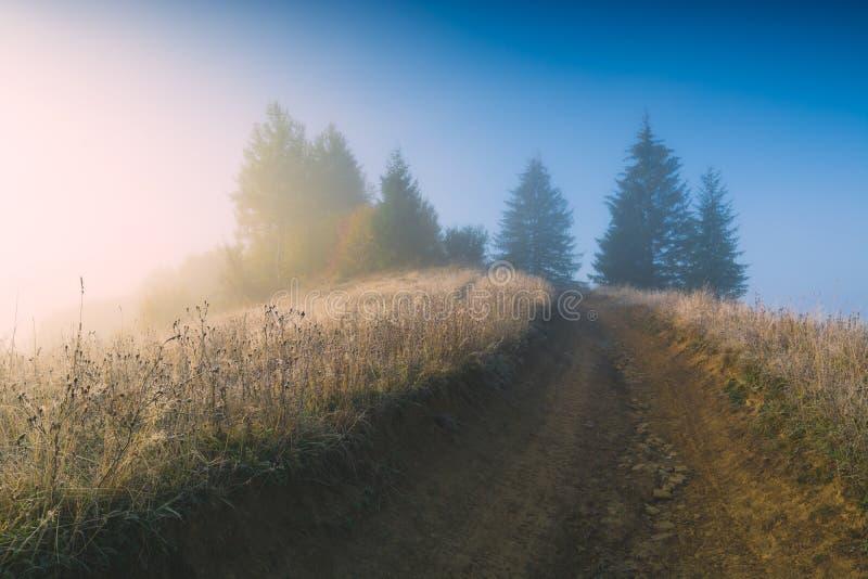 晴朗的有薄雾的早晨 库存照片