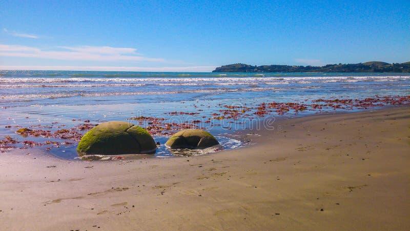 晴朗的海滩在新西兰 图库摄影