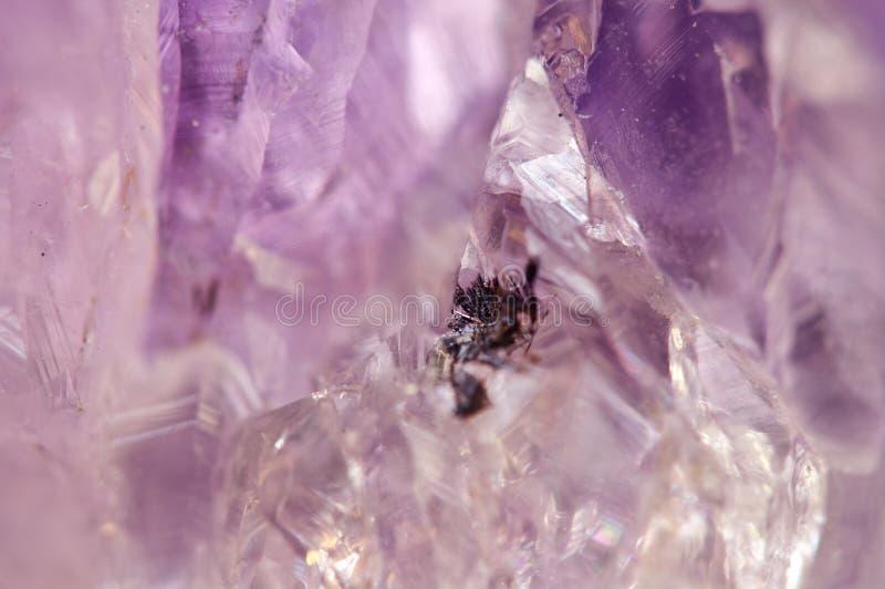 紫晶是石英紫罗兰色品种常用在首饰 库存照片