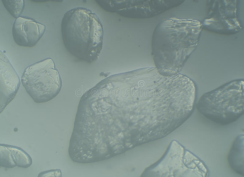 水晶糖特写镜头在水中溶化 免版税图库摄影