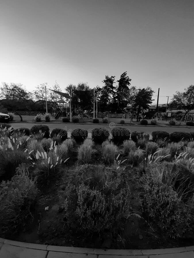 智利兰卡瓜卢尔德体育中心 免版税图库摄影