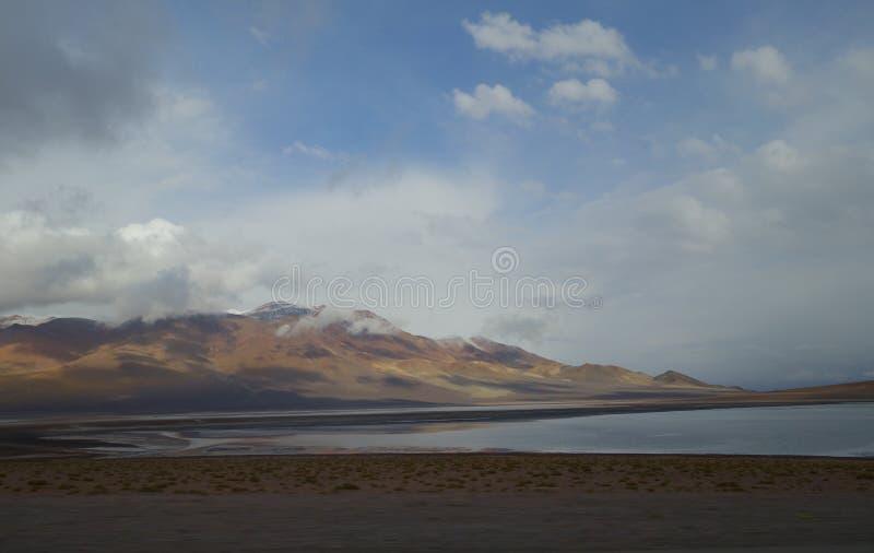 智利沙漠 库存图片