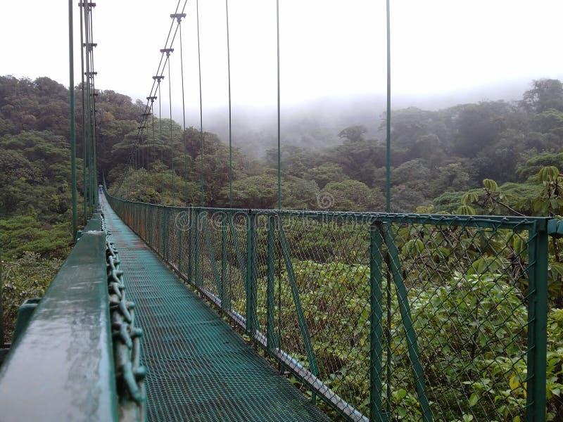 暂停的桥梁在Monteverde,哥斯达黎加 库存照片
