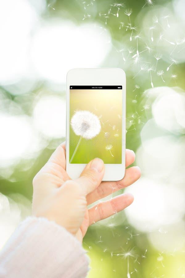 暂挂与花的妇女smartphone 免版税库存图片