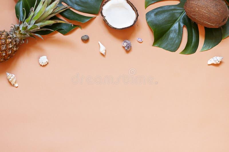 暑假与贝壳和热带叶子的概念框架 r 免版税图库摄影