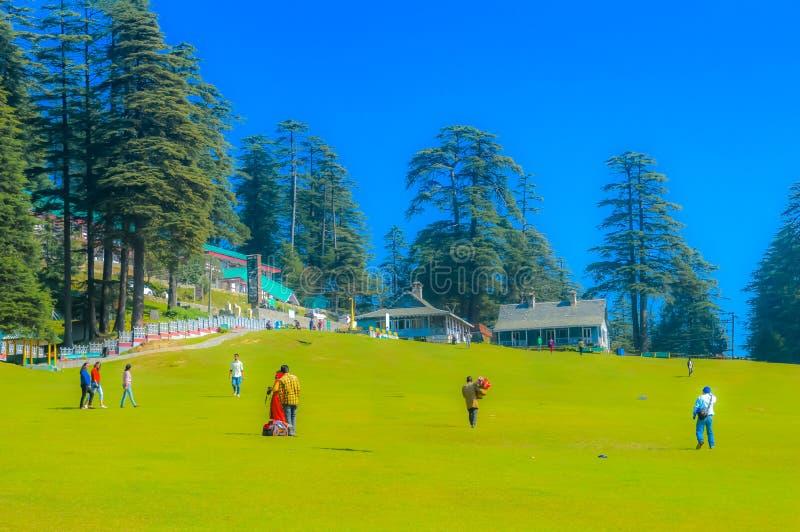 暑假概念村庄围拢与绿色树和绿草在有高大的树木浅兰的天空的公园附近 免版税库存照片