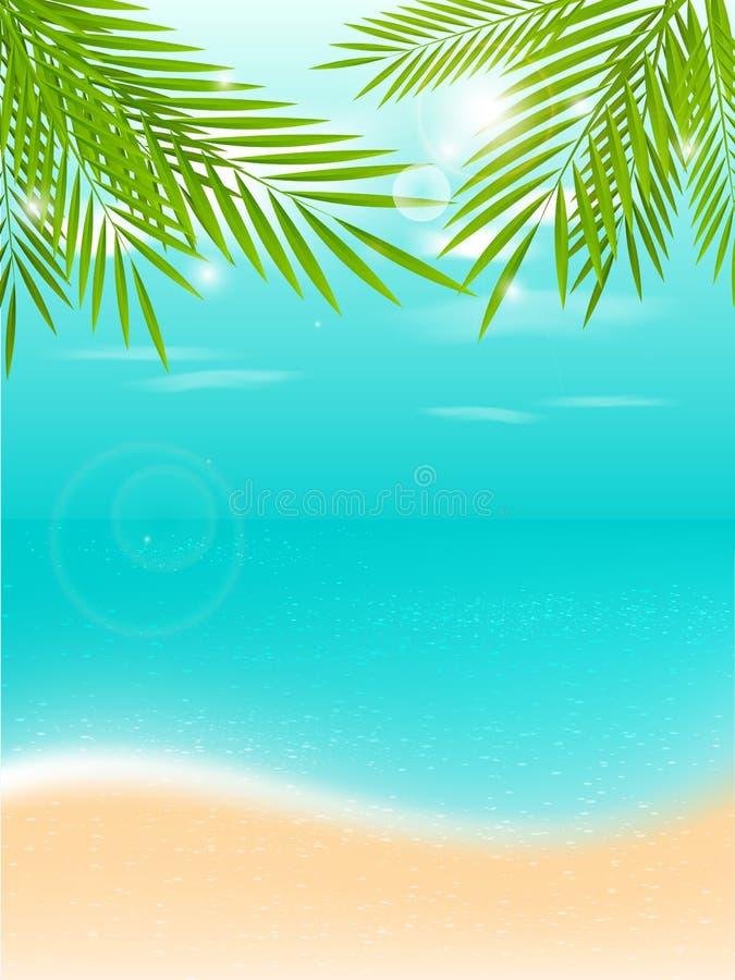 暑假热带背景 皇族释放例证