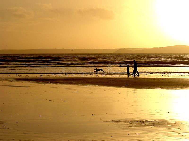 暗淡的海滩 库存图片