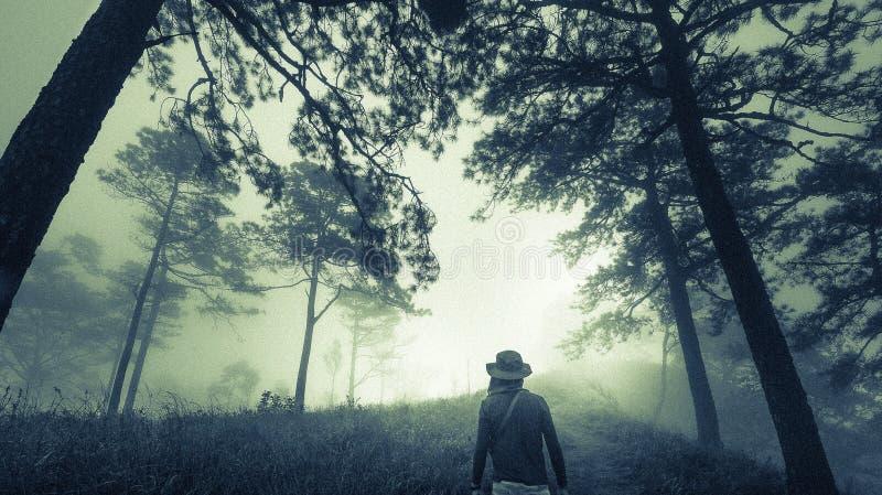 黑暗的有薄雾的森林道路的人在雾,万圣夜概念 免版税库存照片