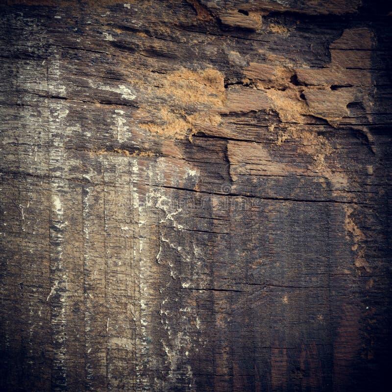 黑黑暗的木背景 免版税库存照片