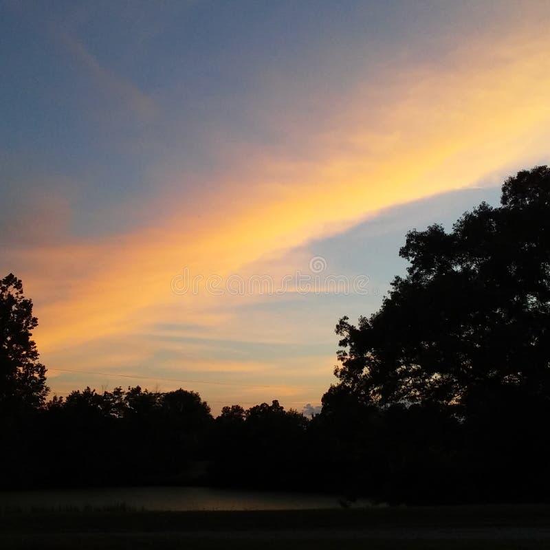 黑暗的树和五颜六色的天空 免版税库存照片