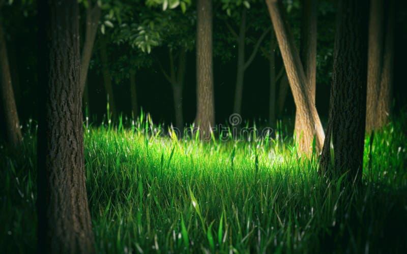插画 包括有 背包, 公园, 森林, 夏天, 庭院, 神仙, 符号, 幻想 - 74图片