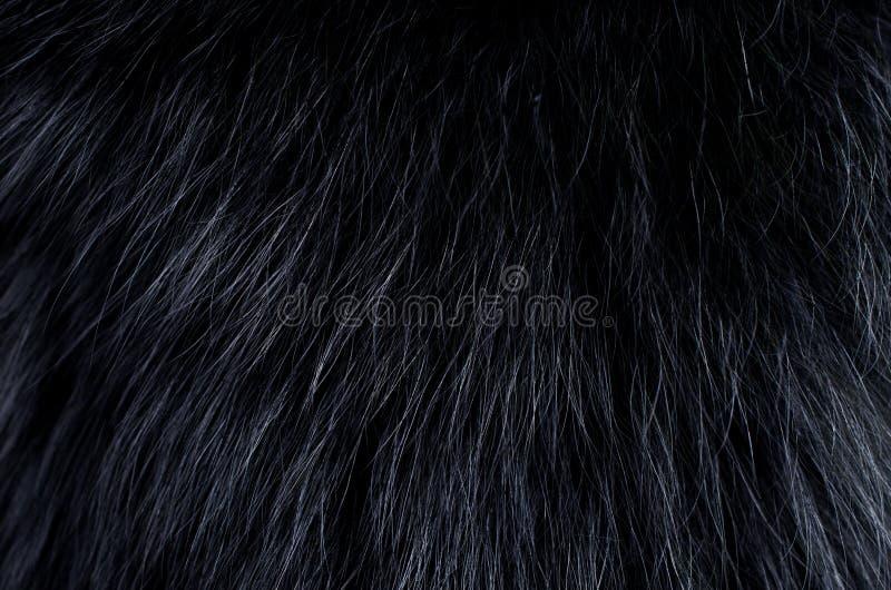 黑暗的毛皮背景  库存照片