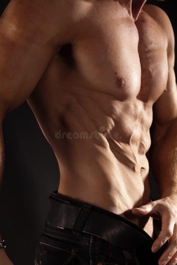 肌肉男性躯干 库存照片