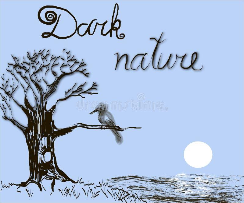 黑暗的自然 免版税库存图片