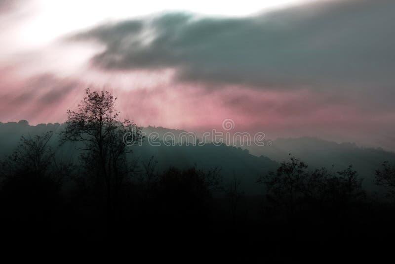 Download 黑暗的幻想风景 库存照片. 图片 包括有 结构树, 国家(地区), 风景, 有雾, 背包, 小山, 幻想 - 62525826